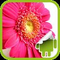 DVR:Flower Pack