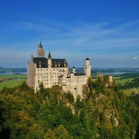 Neuschwanstein Castle, Germany by Sandy Darnstaedt - Buildings & Architecture Public & Historical (  )