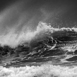 by Diane Ferreira Berard - Landscapes Weather