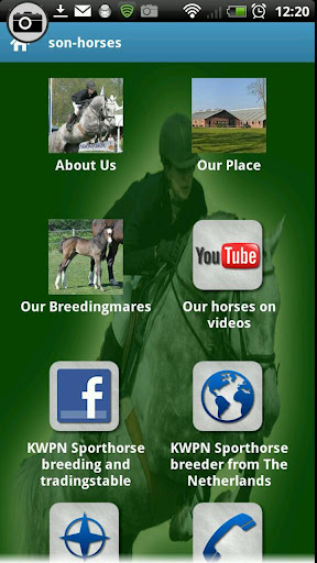 SON-HORSES KWPN Breedingfarm