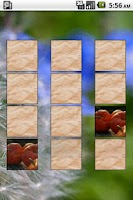 Screenshot of Card Match Donate Memory Game