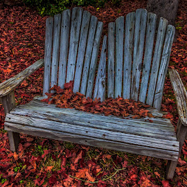 Chair by Carol Plummer - Artistic Objects Furniture ( chair, red, bench, autumn, fall, leaves,  )