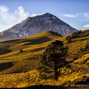 Popo in the morning by Cristobal Garciaferro Rubio - Landscapes Mountains & Hills ( idec volcano, popo, popocatepetl, volcanpo, smoking volcano )