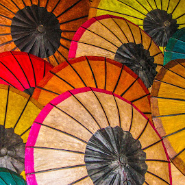 Parasol by Bertrand Lavoie - Artistic Objects Other Objects ( laos, luang prabang )