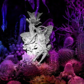 Cacti Faeri by Justin Brosey - Digital Art Things ( symbiosis, brosey, nature, cacti, faeri, fairy )