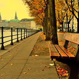 bench_sitting_alone by Bhushan Balapure - City,  Street & Park  Street Scenes