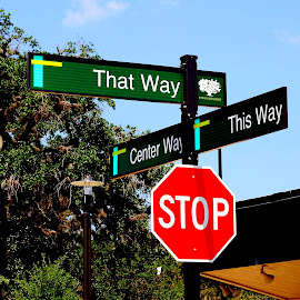 Which way? by Noel Hankamer - City,  Street & Park  Street Scenes ( directions, sign, signs, red, green, street photography )