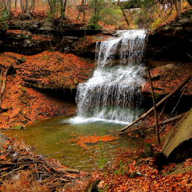 Quaker Falls by Denise Guthery - Landscapes Waterscapes (  )