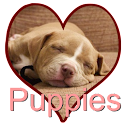 Puppy Love icon