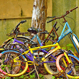 Rusted Bicycles by Malvinder Virdi - Transportation Bicycles ( bicycles, rusted, children, childhood,  )