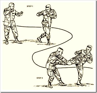 Stepping Side Kick