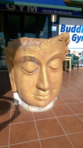 Buddha Gym