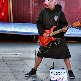 Piggy guitarist by Nic Scott - People Musicians & Entertainers ( guitarist, mask, entertainer, pig,  )