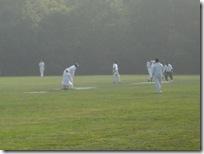 cricket 033