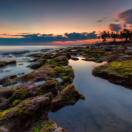 Last Light by Gus Mang Ming - Landscapes Sunsets & Sunrises ( cupel, bali, sunset, beach, sunrise, light )