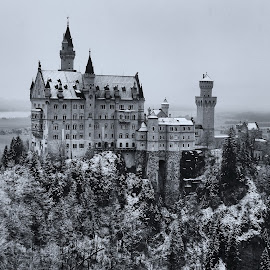 Neuschwanstein Castle in winter, Schwangau by Dharmali Kusumadi - Buildings & Architecture Public & Historical