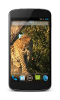 Screenshot of Leopard Free Video Wallpaper