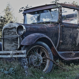 Ford by Peter Murphy - Transportation Automobiles ( headlamp, doors, grill, tires, sunroof, glass, bumper, rust, light, spokes,  )