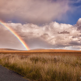 Wicklow Rainbow by Stephen Frank - Landscapes Travel