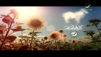 Screenshot of Islamic Live TV & Fun Games