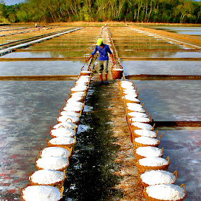 Salt Farm of Pangasinan by Edwin   S. Loyola - News & Events World Events