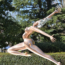 statua dorata by Francesco Benettolo - Buildings & Architecture Statues & Monuments ( slancio, traguardo, arrivo, statua, meta )
