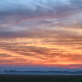 Hazy Morning by Owen Rockett - Landscapes Cloud Formations ( haze, morning haze, sleepy morning, the haze, hazy morning )