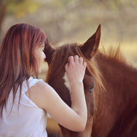 by Silke Jordaan - Novices Only Portraits & People ( love, pony, girl, horse, brown, light, natural )