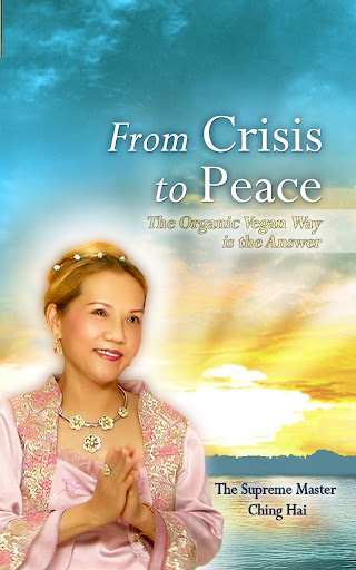 From Crisis to Peace