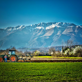 Farmer by Luigi Esposito - Landscapes Prairies, Meadows & Fields ( grassland, mountains, farmer, trees, tractor, spring )