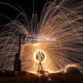 Forever Wild by Pete Daley - Abstract Light Painting ( snowshoe, light painting, night photography, steelwool, night, self portrait, long exposure, nightscape )