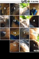 Screenshot of Yorkie Slide Puzzle iSlider