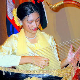 Myanmar harpist by Leong Jeam Wong - People Musicians & Entertainers ( harp, music, string, lady, beauty, instrument )