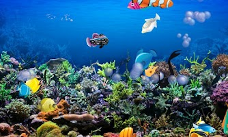 Screenshot of Awesome Aquarium for Kids