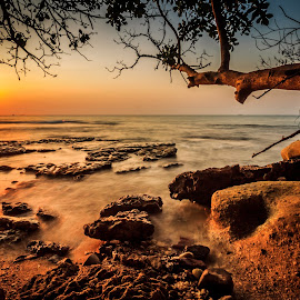To The Sun by Anjar Wisnubroto - Landscapes Waterscapes ( pantai, indonesia, sunset, beach,  )