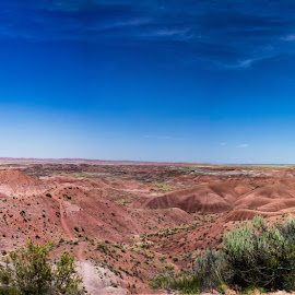 The Painted Desert by Lisa Fitzthum - Landscapes Deserts ( mountains, desert, sky, pamorama, rocks )