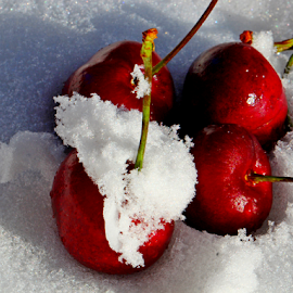 by Dipali S - Food & Drink Fruits & Vegetables ( cherry, fruit, red, cold, fresh, snow )