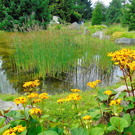 SUMMER TIME by Wojtylak Maria - City,  Street & Park  City Parks ( nature, flora, botanical garden, pond, city )