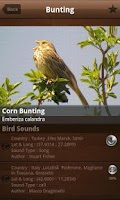 Screenshot of Bird Calls 4500+ Songs & Sound