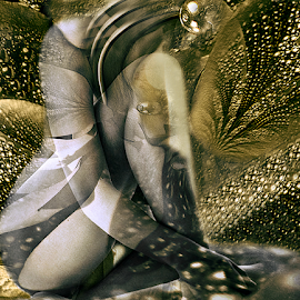 I HAD A DREAM by Carmen Velcic - Digital Art People ( abstract, body, nude, woman, she, lady, digital )