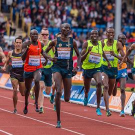 IAAF Diamond League Birmingham - 2014 by Toyin Oshodi - Sports & Fitness Running ( athletics, prix, grand, sport, running )