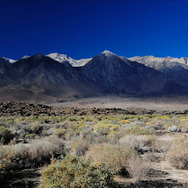 Shadow On The Mountain by Dub Scroggin - Landscapes Deserts ( mountain, desert, upper mojave, california, shade )