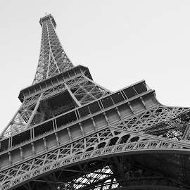 The Eiffel Tower by Stevie Jay - Buildings & Architecture Architectural Detail ( paris, building, tower, white, eiffel, architecture, black )