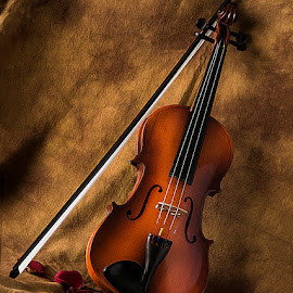 by Rakesh Syal - Artistic Objects Musical Instruments (  )