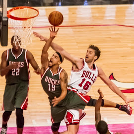Coming up short by Gary Duncan - Sports & Fitness Basketball ( basketball, bucks, bulls, nba, gasol )