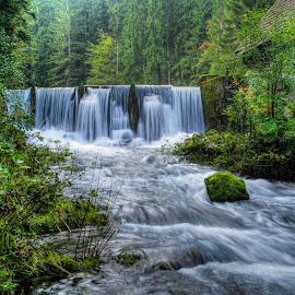Morning water by Siniša Biljan - Nature Up Close Water
