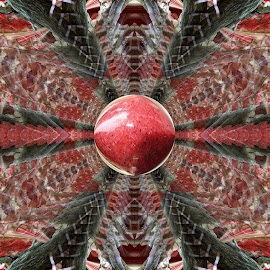 Root, Branch and a raspberry Smoothie by Dark Reid - Digital Art Abstract