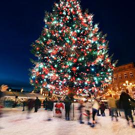 Winter Wonderland by Irwan Limanto - News & Events Entertainment ( uk, sky, ice, movement, christmas, night, skating, nottingham, light, city )