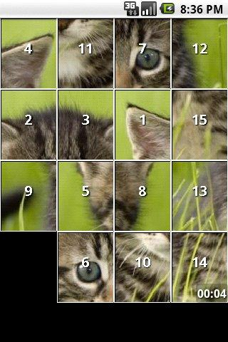 Kitten and Cat Puzzles