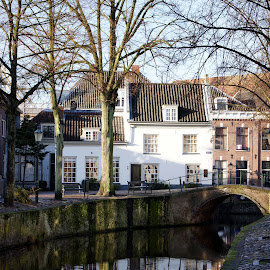 Amersfoort reflection 1 by Anita Berghoef - Buildings & Architecture Homes ( home, reflection, winter, white, architecture, canal )